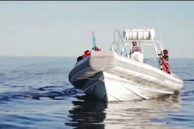 Lanzamiento Promoción avistaje de ballenas http://www.ambitosur.com.ar/lanzamiento-promocion-avistaje-de-ballenas/ La provincia lanza la campaña de avistaje de ballenas con una nuevaproducción de video. Podésverla aquí.