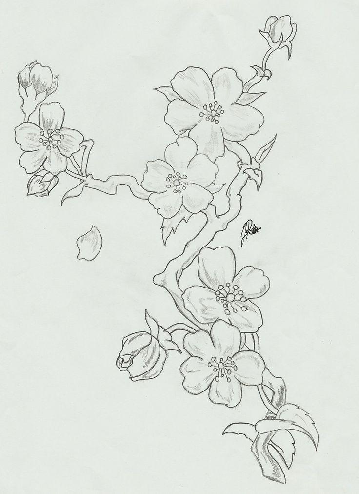 cherry_blossoms__branch_sketch_by_faytofallstars-d… – #cherryblossom #cherrybl… – Bleistiftzeichnung