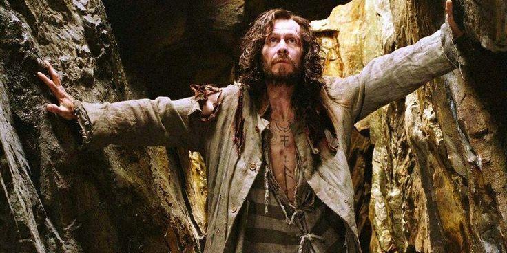 Sirius Black Animagus Harry Potter Sirius Black Gary Oldman Harry Potter Sirius Black Costume
