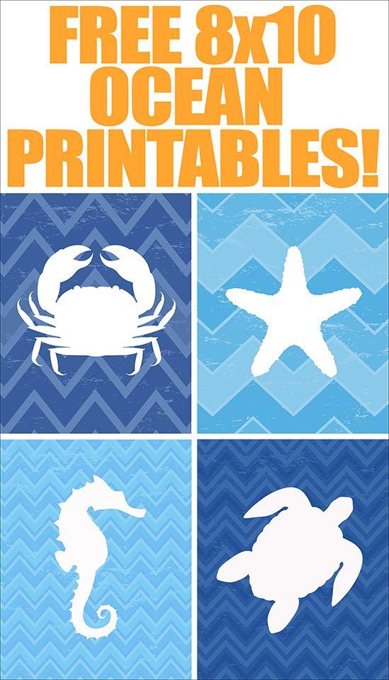 FREE ocean animals printables! Follow us to http://diygods.com