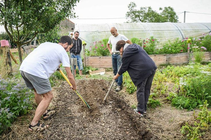 Formation permaculture reconnue par Pole Emploi avec Bruno Masson