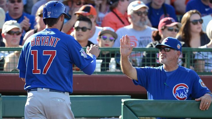 Versatile Cubs roster is right up Joe Maddon's alley