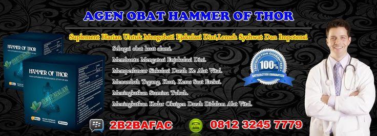 Jual Obat Hammer Of Thor Jember