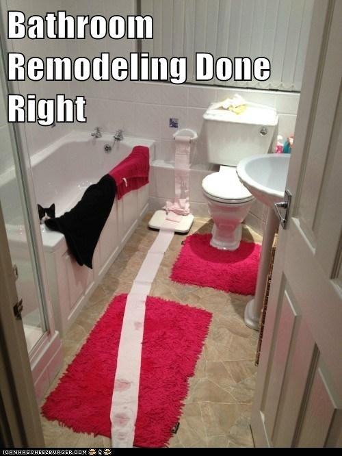 Bathroom Remodel Meme 121 best lolcats :) images on pinterest | animals, funny stuff and
