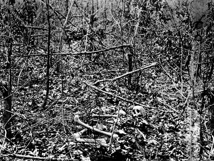 Skulls remaining on the field and trees destroyed at the Battle of the Wilderness, 1864.