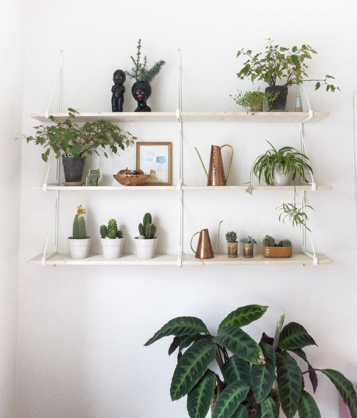 Best 25 plant shelves ideas only on pinterest bathroom ladder shelf bedroom plants and - Corner shelf for plants ...