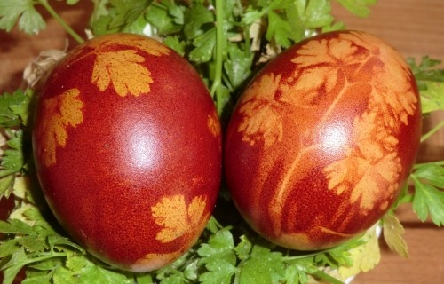 Dyeing Eggs with Onion Skins, and using rice, oatmeal, leaves...