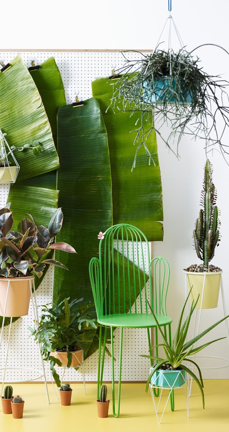 Part of the Cactus Indoor Garden Collection, pair with the matching table, or indulge in a vibrant colour palette by mixing with the co-ordinating table and chairs in a bright coral.