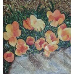 fiori-nella-roccia