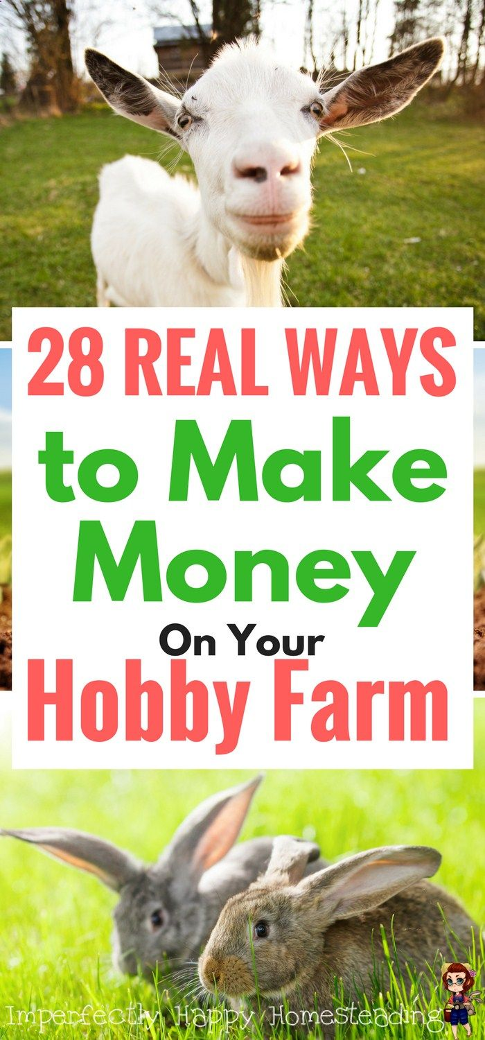 Make money on your hobby farm or small homestead with ...