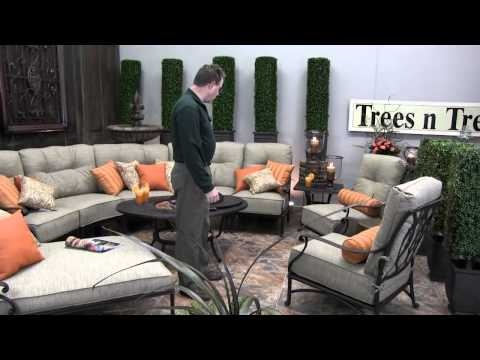 Introduction To Mayfair Hanamint Trees N Trends