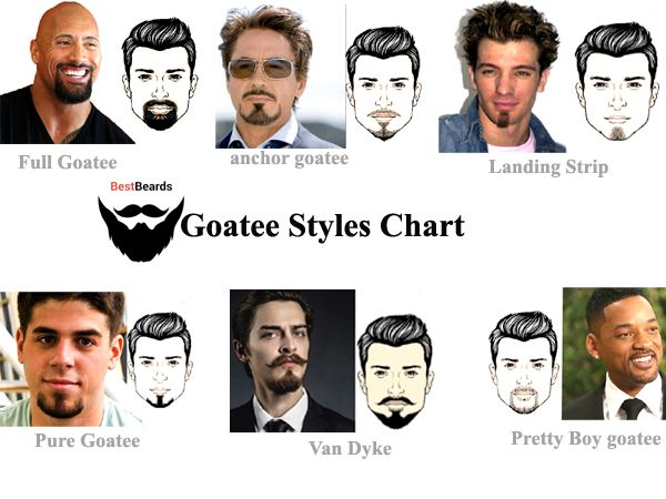 Charming Goatee Styles Chart