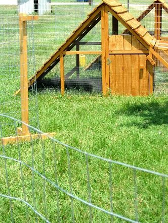 1000 images about portable chicken yard and garden fence for Portable chicken yard