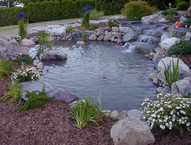 koi pond settlement chamber design best 25 pond pumps and filters ideas on pinterest pond