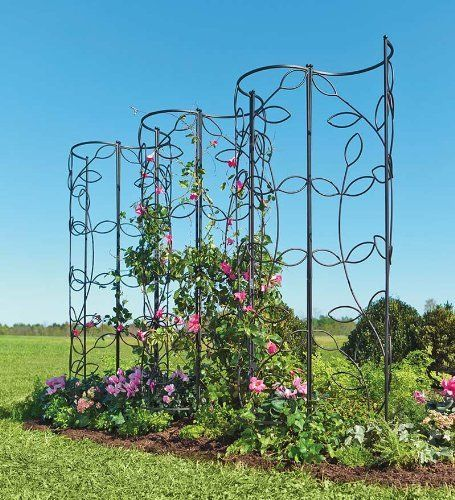 Steel leaf obelisk trellis by plow hearth garden trellis can convert to multiple - Climbing rose trellis ...