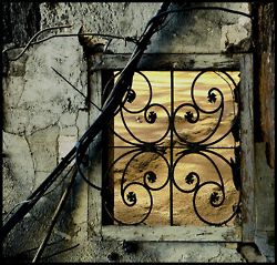 This Ivy House: Archive. Abandoned window