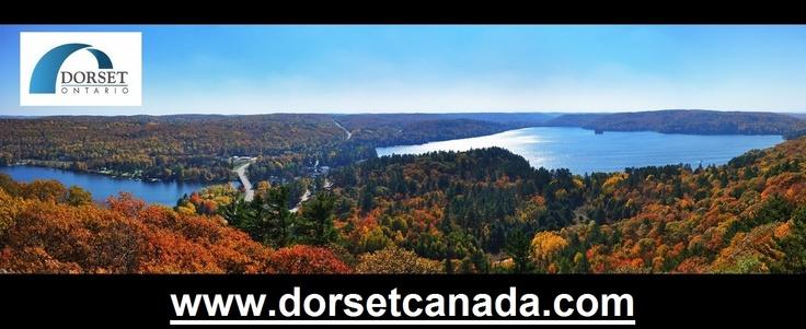 www.dorsetcanada.com