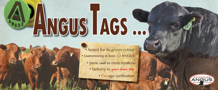 Learn more about the #CanadianAngusRancherEndorsed #tag program! Brand your cattle #Angus by tagging them green! #cdnangus