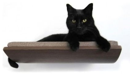 Curve Pet Bed by Yanko Design - For those who insist their pets don't mess with the sleek lines of their minimalist abodes, there is an alternative to the fluffy, furry bed that lies on the floor.
