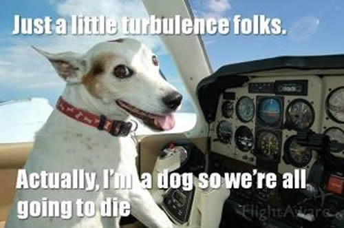 Just a little turbulence...