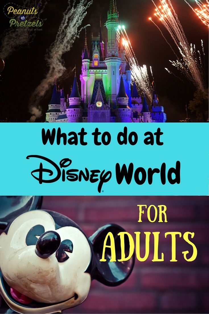 What to do at Disney World? Just because you are an adult doesn't mean you won't enjoy a trip to Disney World. There is actually such a wide variety of entertainment options available at Disney, even for adults, that we categorized them here. So whether you are a foodie, love entertainment, are an explorer or an adrenaline junkie, you'll see that it's actually hard to decide what to do Disney World for adults! | Peanuts or Pretzels