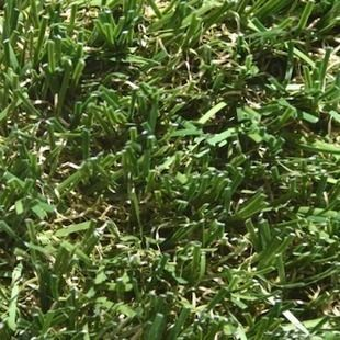 """Artificial+Turf:+7+Reasons+to+Consider+the+New+""""Grass""""+Alternative"""