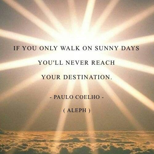 Paulo Coelho Quotes Life Lessons: 53 Best Paulo Coelho Quotes Images On Pinterest