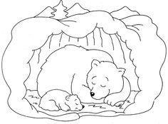 kleurplaat beer winterslaap - Google zoeken