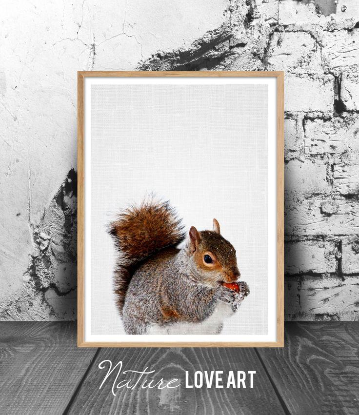 Photo écureuil, poster neige, affiche animaux, écureuil sous la neige, photo couleur, décoration murale, décoration nature, image animaux de la boutique NatureLoveArt sur Etsy