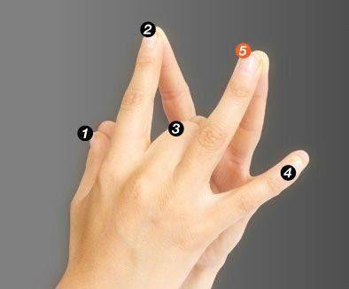 Una antigua leyenda china dice:   Los pulgares representan a los padres.   Los índices representan tus hermanos y amigos.   El dedo med...