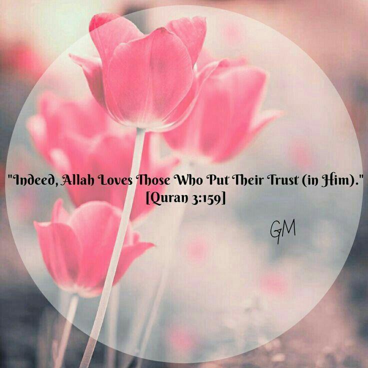 J'aime les couleurs elles sont simples et belles et douces. Les mots du Saint Coran sont appaisants et réconfortants