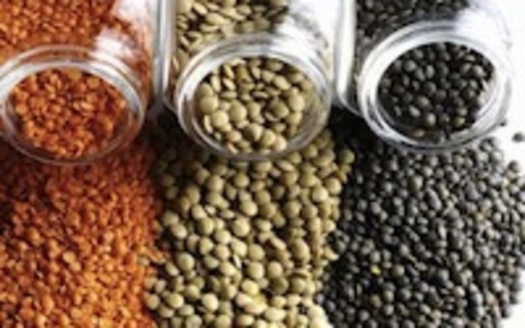 Low in calories and high in nutrition, lentils are the perfect legume to eat in the summer in salads, spreads, for crudité and crackers, and as an item on a vegetarian dinner plate.