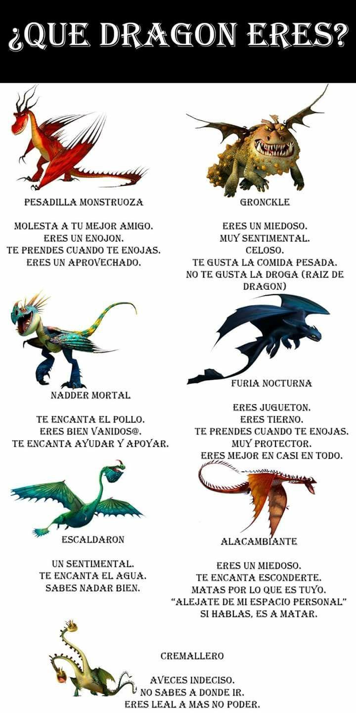 Los Memes Han Vuelto Xd 2 Libro De Memes Cómo Entrenar A Tu Dragón Entrenando A Tu Dragon Dragones