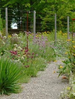 7 best my gravel garden images on Pinterest Gravel garden Garden