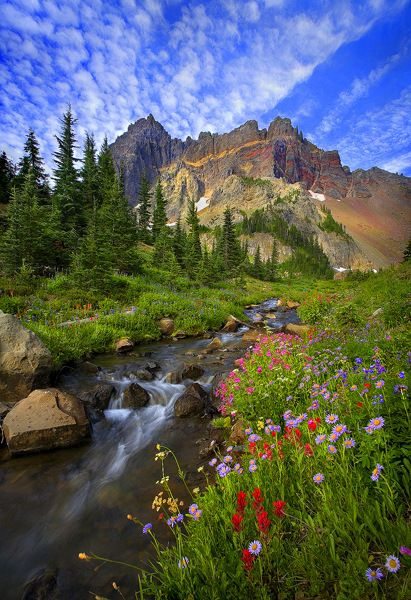 Cascades Mountains, Washington State...just beautiful beyond belief...and it smells so gooood in WA.....fresh!