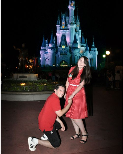 Walt Disney World Proposal In Front Of