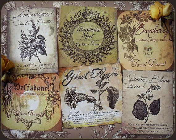 A Witch S Herbal Sticker Labels Graveyards