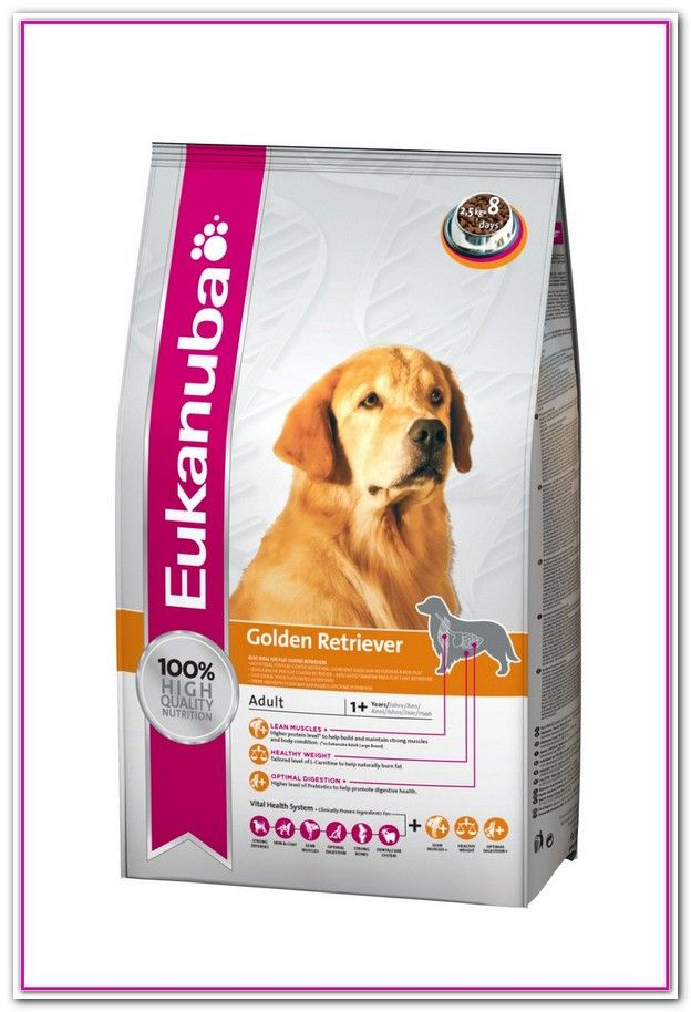 Best Dog Food For Golden Retrievers With Allergies Best Dog Food
