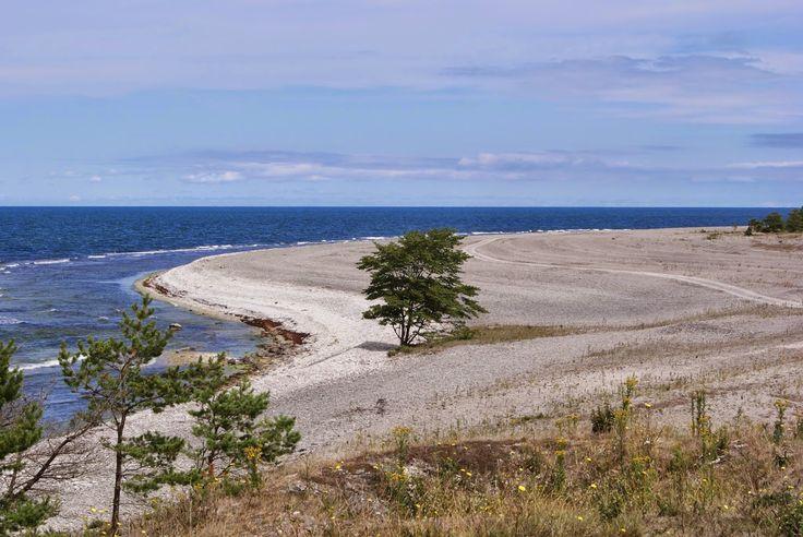 stenkusten norra gotland. Hitta hit: Från Visby, kör väg 148 mot Fårösund. I Lärbro, sväng mot Kappelshamn och precis innan Kappelshamnsviken följ skyltning mot Fleringe. Passera Nordkalks fabrik och följ Stenkusten.