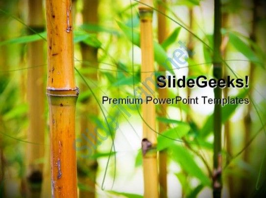 30 best Green Environment PowerPoint templates images on Pinterest - nature powerpoint template