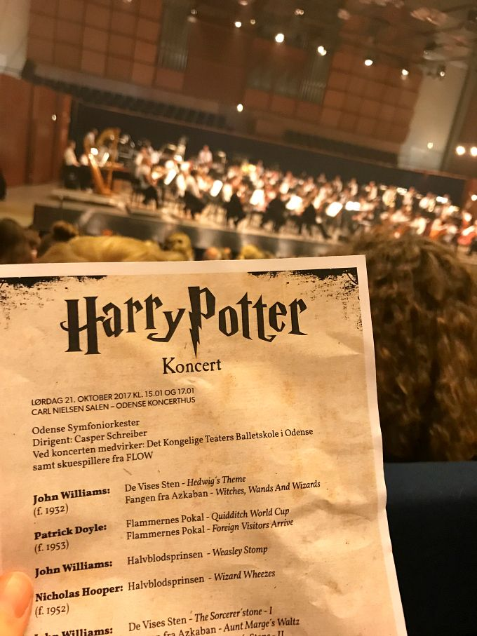 Have you ever heard about the Harry Potter festivals?