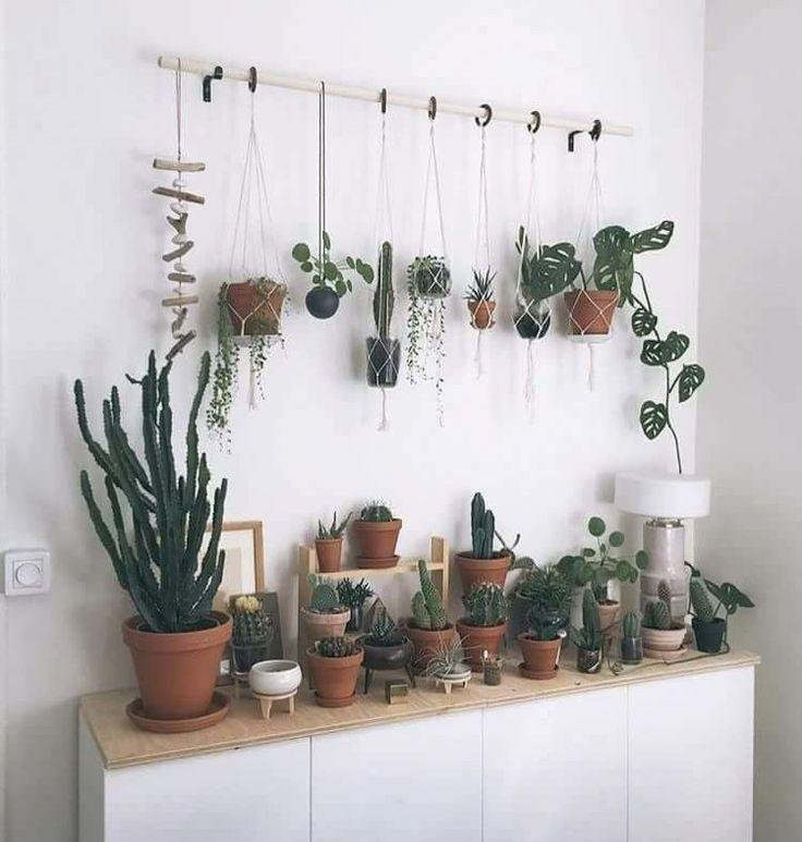 Eine Rute zum Aufhängen von Pflanzen