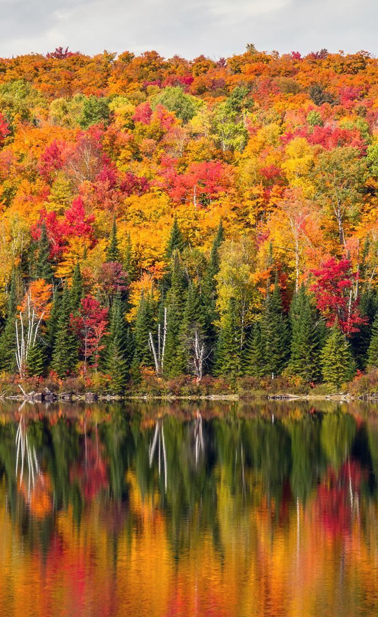 Spectacular Autumnal colours in Quebec