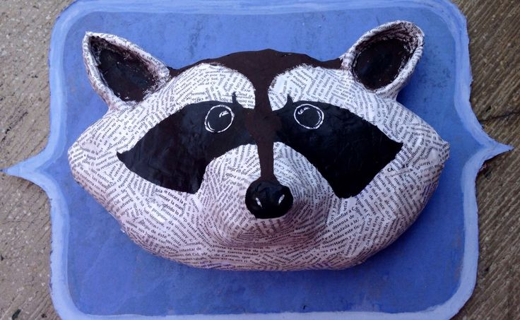 Raccoon  Vanessa Lopez