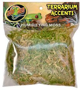 Terrarium Accents: Humidifying Moss