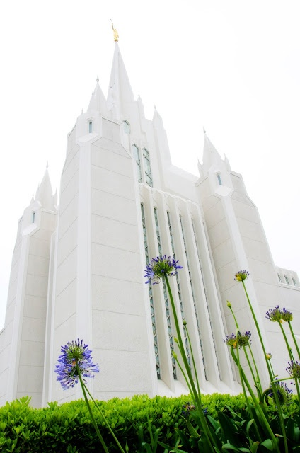 San Diego, California LDS Temple Pictures  Love the perspective!