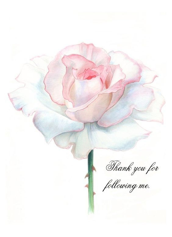 Thank you for following me. I love to share my pins. ~ Ann