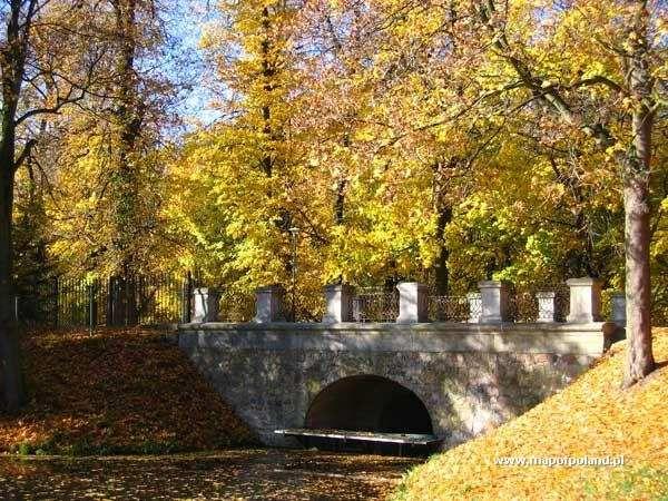 Park miejski jesienią - Skierniewice