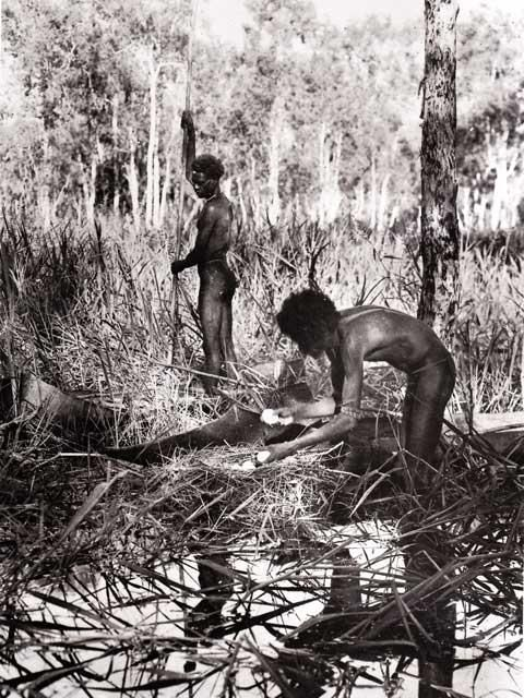 Blueswami - Old Photos of Australian Aborigines - Old Photos of Australian Aborigines