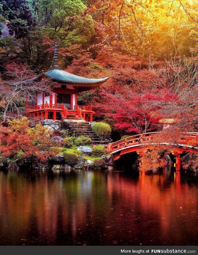 Kyoto Japan Japan Landscape Japanese Garden Kyoto Japan